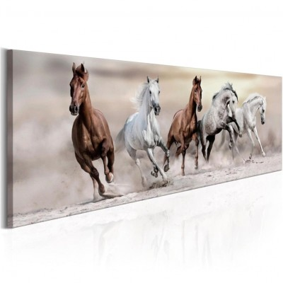 Running Horse Print Animal Poster ZK